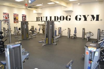 Bulldog Gym - Most